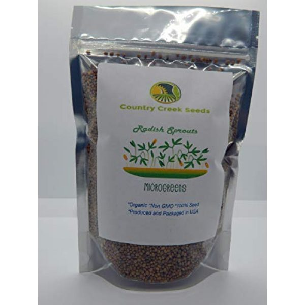 Radish Sprouting Seeds Organic Seed 1 Radish, Microgreen, Sprouting, 16 OZ, Organic Seed, Non GMO - Country Creek LLC Brand - High Sprout Germination- Edible Seeds, Gardening, Hydroponics, Growing Salad Sprouts
