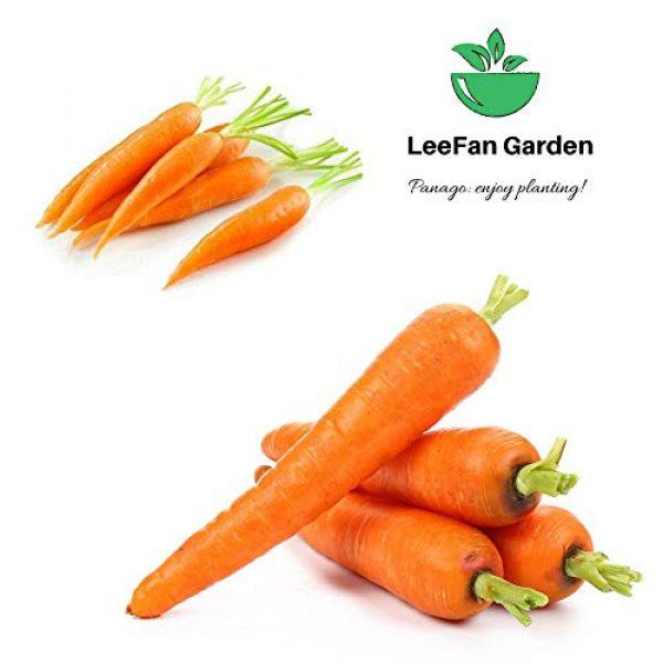 LeeFan Garden Organic Seed 4 500+ Carrot Seeds for Garden Planting, Non-GMO Organic Carrot Seeds, Cheap Widely Adaptable Seeds