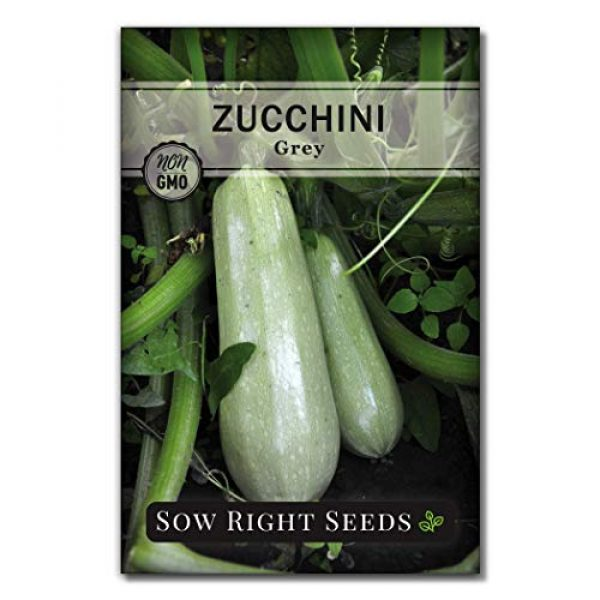 Sow Right Seeds Heirloom Seed 4 Sow Right Seeds - Zucchini Squash Seed Collection for Planting - Black Beauty, Grey, Round Zucchinis and Yellow Straightneck Summer Squash, Non-GMO Heirloom Seeds to Plant a Home Vegetable Garden