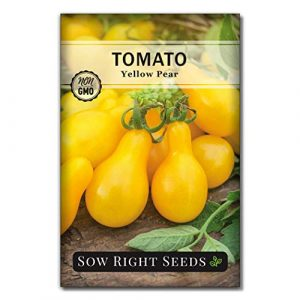 Sow Right Seeds Heirloom Seed 1 Sow Right Seeds - Yellow Pear Tomato Seed for Planting - Non-GMO Heirloom Packet with Instructions to Plant a Home Vegetable Garden - Great Gardening Gift (1)