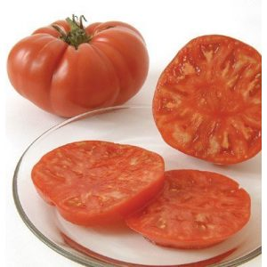 David's Garden Seeds Organic Seed 1 David's Garden Seeds Tomato Beefsteak Brandywine D2845A (Red) 50 Organic Heirloom Seeds