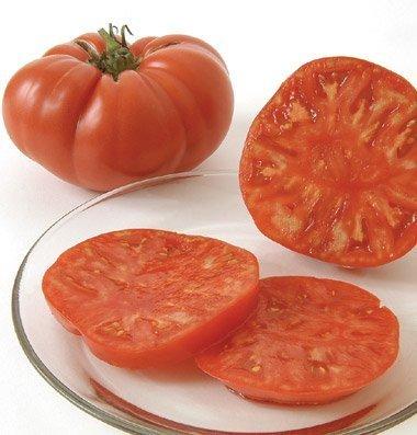 David's Garden Seeds  1 David's Garden Seeds Tomato Beefsteak Brandywine D2845A (Red) 50 Organic Heirloom Seeds