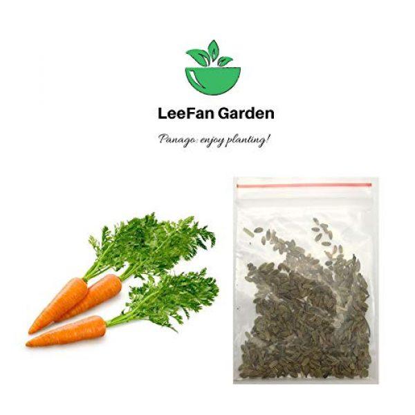 LeeFan Garden Organic Seed 3 500+ Carrot Seeds for Garden Planting, Non-GMO Organic Carrot Seeds, Cheap Widely Adaptable Seeds