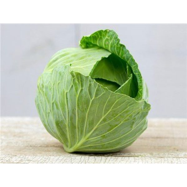 "Isla's Garden Seeds Organic Seed 1 ""Brunswick"" Cabbage Seeds, 300+ Premium Organic Heirloom Seeds, Fantastic Addition to Home Garden!, (Isla's Garden Seeds), Non GMO, 85% Germination Rates, Highest Quality Seeds, 100% Pure"