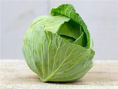 "Isla's Garden Seeds  1 ""Brunswick"" Cabbage Seeds"