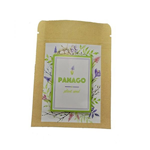 Panago Seeds Organic Seed 3 1300+ Long Green Scallion Seeds for Planting, Non-GMO Organic Heirloom Scallion Seeds