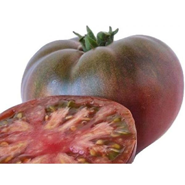 Hill Creek Seeds Heirloom Seed 2 Cherokee Purple Tomato Seeds - Heirloom Garden Variety - Non GMO