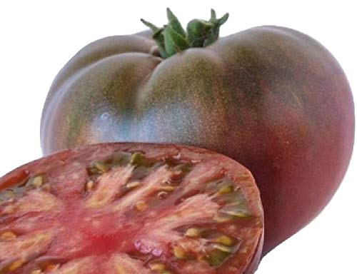 Hill Creek Seeds  2 Cherokee Purple Tomato Seeds - Heirloom Garden Variety - Non GMO