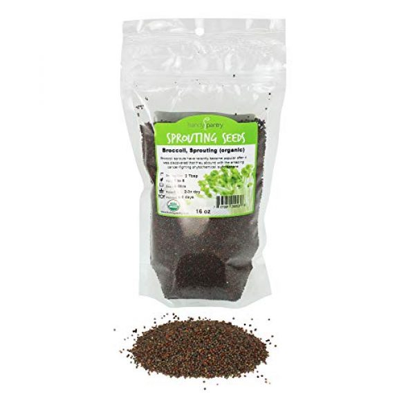 Handy Pantry Organic Seed 1 Organic Broccoli Sprouting Seeds By Handy Pantry | 1 Pound Resealable Bag| | Non-GMO Broccoli Sprouts Seeds, Contain Sulforaphane