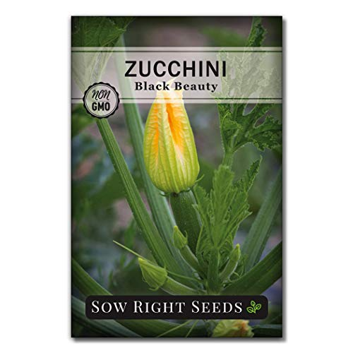 Sow Right Seeds  2 Sow Right Seeds - Zucchini Squash Seed Collection for Planting - Black Beauty