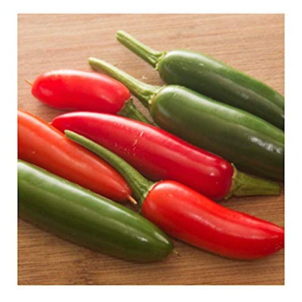 Isla's Garden Seeds Organic Seed 1 Serrano Hot Pepper Seeds, 100+ Premium Heirloom Seeds, 90% Germination Rates, Produces fiery hot pepper plants! - Capsicum annuum - (Isla's Garden Seeds) - Non Gmo Organic, Highest Quality