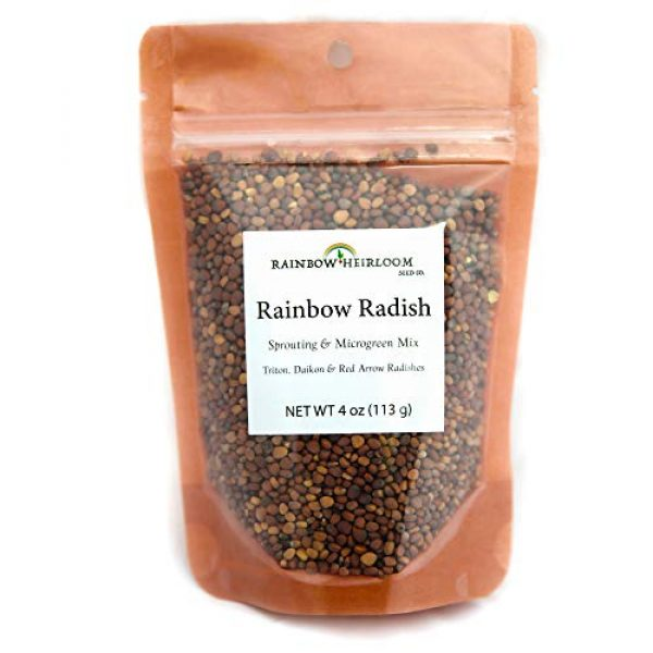 Rainbow Heirloom Seed Co. Heirloom Seed 4 Heirloom Sprouting & Microgreen Seed Variety Pack | Contains Waltham 29 Broccoli Sprouts Seeds, Rainbow Radish Sprouting Seeds Mix & Superfood Microgreen Mix | Non-GMO | Rainbow Heirloom Seed Co.