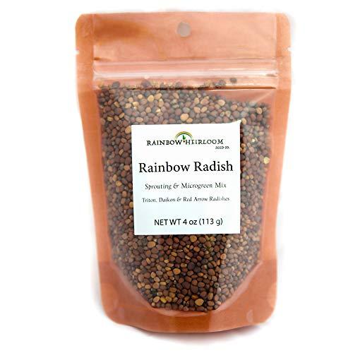 Rainbow Radish Sprouting Seeds Mix & Superfood Microgreen Mix   Non-GMO   Rainbow Heirloom Seed Co.