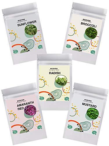 ECOVOO  1 Organic Microgreen Seeds Salad Mix - Non GMO Microgreen Seeds