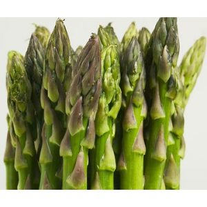 Seed Kingdom  1 Asparagus Mary Washington Great Heirloom Vegetable by Seed Kingdom Bulk 2