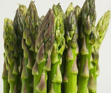 Seed Kingdom  1 Asparagus Mary Washington Great Heirloom Vegetable by Seed Kingdom Bulk 2
