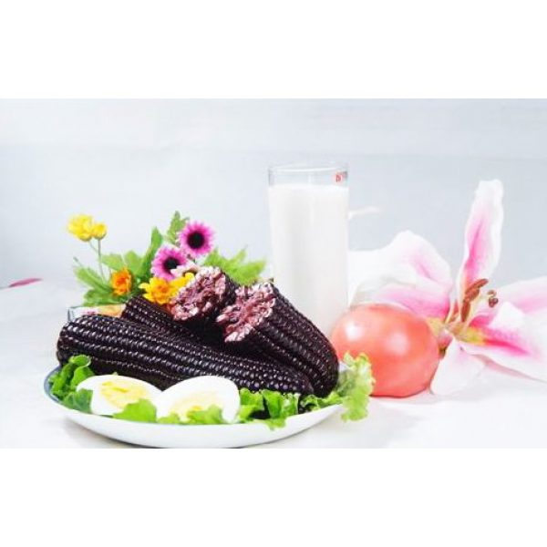 Kuting Organic Seed 4 Corn Seeds 30g Sweet Black Giant Waxy Sticky Corn Survival Garden Vegetable Organic Chinese Fresh Fruit Seeds for Planting Outdoor for Cooking Soup Salad Juice Taste Sweet Delicious(Black Corn Seeds)