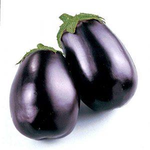 Isla's Garden Seeds Organic Seed 1 Black Beauty Eggplant Seeds, 100+ Premium Heirloom Seeds, Fantastic Addition to Home Garden!, (Isla's Garden Seeds), Non GMO Organic, 90% Germination Rates, Highest Quality, 100% Pure
