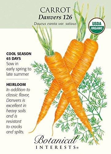 Hirts: Seed; Vegetable Organic Seed 1 'Danvers 126' Carrot Seeds - 1 Gram - Organic