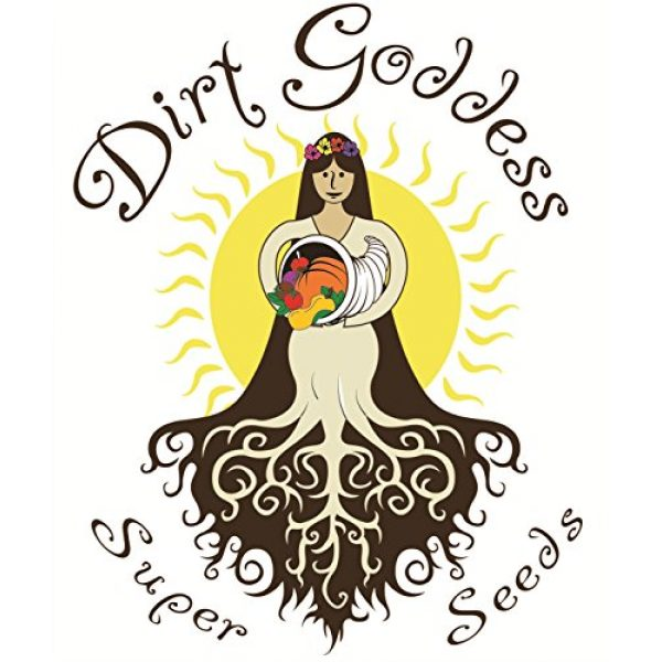 Dirt Goddess Super Seeds Organic Seed 4 Bulk Organic Kentucky Wonder Pole Beans (1/2 Lb)