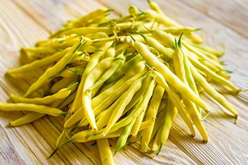 50+ Premium Heirloom Seeds