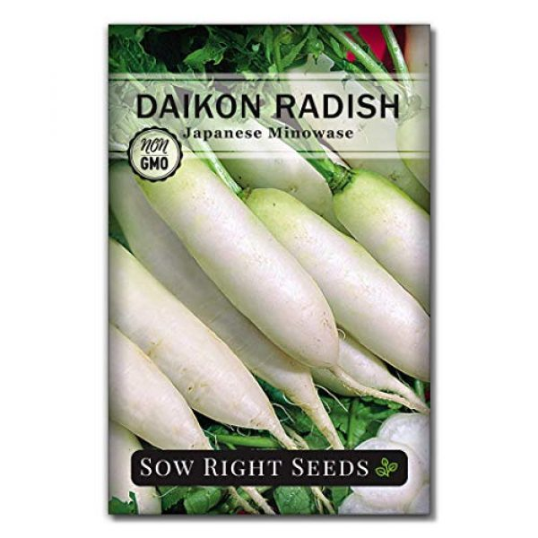 Sow Right Seeds Heirloom Seed 6 Sow Right Seeds - Radish Seed Collection for Planting - Champion, Watermelon, French Breakfast, China Rose, and Minowase (Diakon) Varieties, Non-GMO Heirloom Seed to Plant Home Vegetable Garden