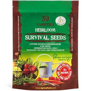 Grow For It Heirloom Seed 1 Heirloom Vegetable Seeds Non GMO Survival Seed Kit - Part of Our Legacy and Heritage - 50 Varieties 100% Naturally Grown- Best for Gardeners Who Raise Their Own Healthy Food