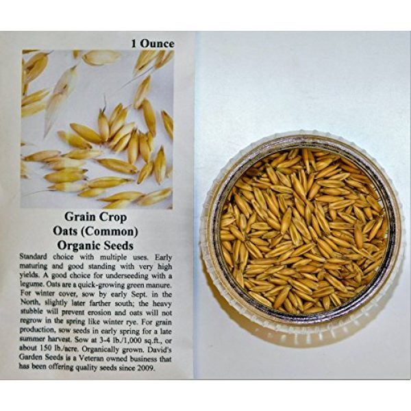 David's Garden Seeds Organic Seed 2 David's Garden Seeds Grain Crop Oats Common DF2509 (Green) Non-GMO, Organic One Ounce Package