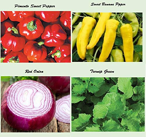 Hot Pepper Seeds-Red Onion Seeds- Green Onion Seeds