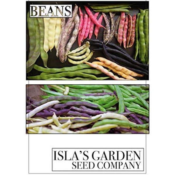 Isla's Garden Seeds Heirloom Seed 3 Sugar Ann Snap Pea Garden Seeds, 50+ Premium Heirloom Seeds, Sweet & Delicious Flavor in Your Home Garden!, (Isla's Garden Seeds), Non GMO, 95% Germination Rates, Highest Quality Seeds