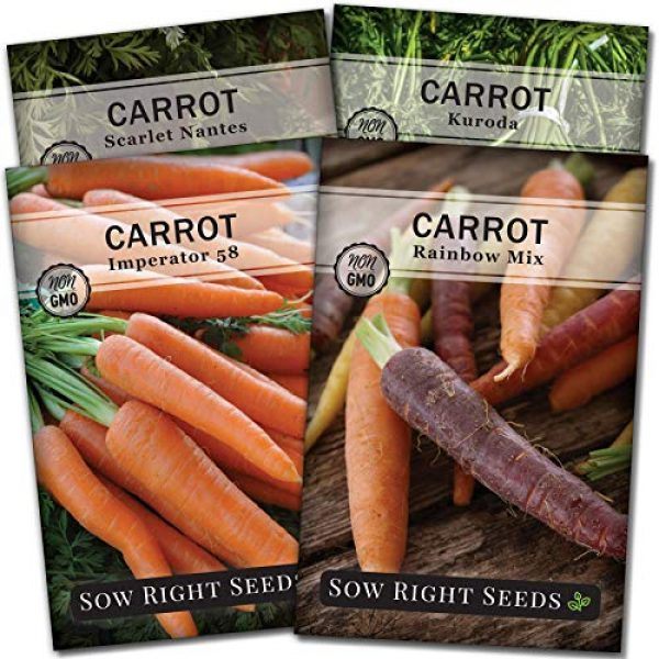 Sow Right Seeds Heirloom Seed 1 Sow Right Seeds - Carrot Seed Collection for Planting - Rainbow, Nantes, Imperator, and Kuroda Varieties. Non-GMO Heirloom Seeds to Plant a Home Vegetable Garden, Great Gardening Gift