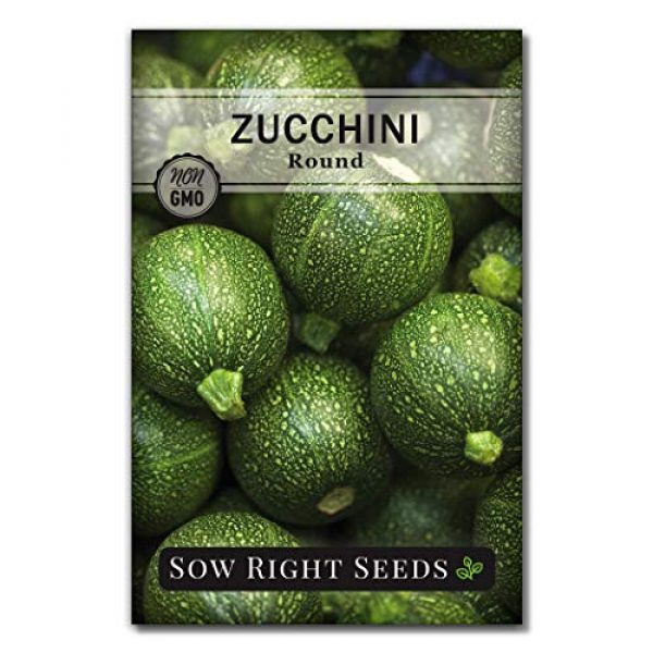 Sow Right Seeds Heirloom Seed 2 Sow Right Seeds - Zucchini Squash Seed Collection for Planting - Black Beauty, Grey, Round Zucchinis and Yellow Straightneck Summer Squash, Non-GMO Heirloom Seeds to Plant a Home Vegetable Garden