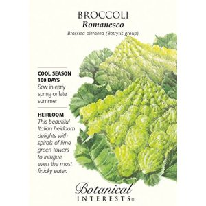 "Botanical Interests  1 Broccoli ""Romanesco"" Heirloom Seeds"