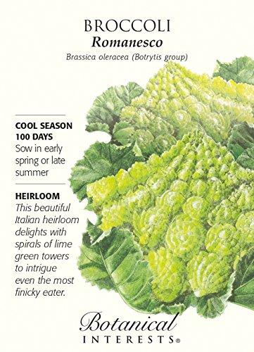 "Botanical Interests  1 Broccoli ""Romanesco"" Heirloom Seeds"