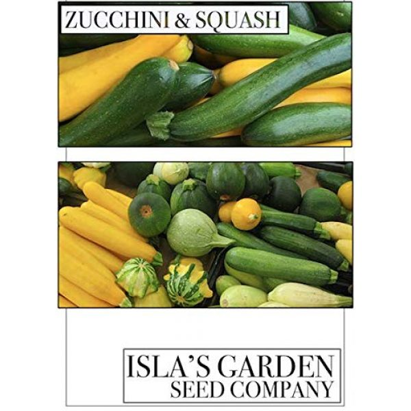 Isla's Garden Seeds Heirloom Seed 6 Cocozelle Zucchini Summer Squash Seeds, 30+ Premium Heirloom Seeds, Fantastic Addition to Your Home Garden! Delicious & Huge! (Isla's Garden Seeds),Non GMO, 90% Germination Rates, Highest Quality
