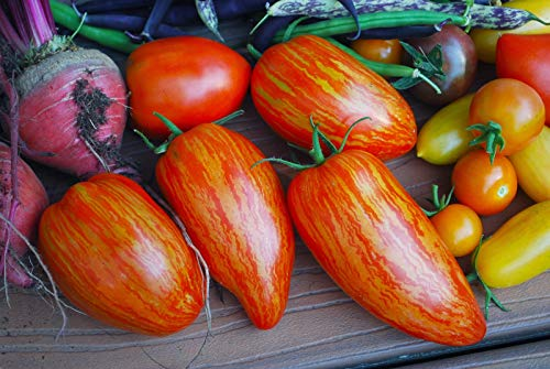 Delicious Hybrid! (Isla's Garden Seeds)