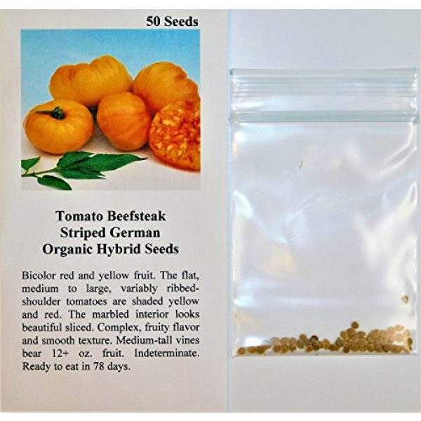 David's Garden Seeds Organic Seed 2 David's Garden Seeds Tomato Beefsteak Striped German SL2372 (Orange) 50 Non-GMO, Organic, Heirloom Seeds