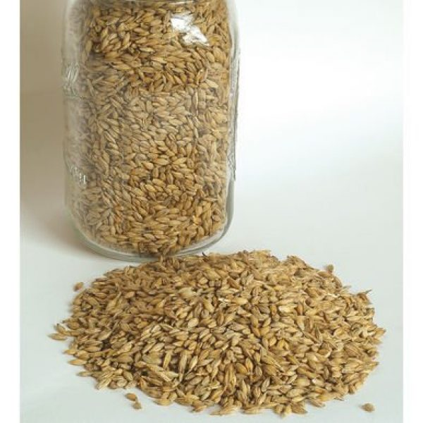 David's Garden Seeds Organic Seed 1 David's Garden Seeds Grain Crop Barley Robust 2720 (Brown) Non-GMO, Organic One Ounce Package