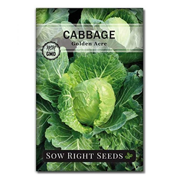 Sow Right Seeds Heirloom Seed 2 Sow Right Seeds - Cabbage Seed Collection for Planting - Savoy Perfection, Red Acre, Golden Acre, and Michihili (Nampa) Cabbages, Instruction to Plant and Grow a Non-GMO Heirloom Home Vegetable Garden