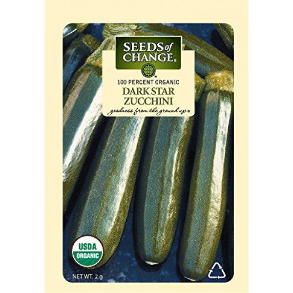 SEEDS OF CHANGE Organic Seed 1 Seeds of Change Certified Organic Dark Star Summer Squash Zucchini