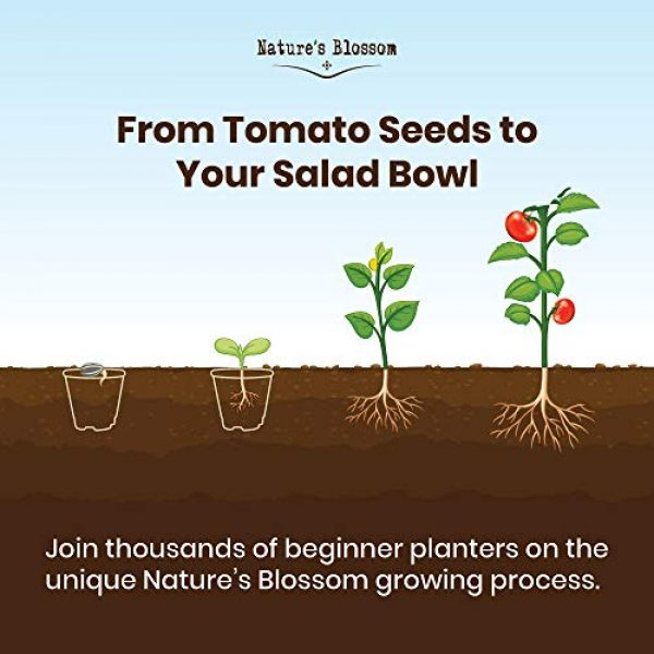 Nature's Blossom Organic Seed 6 Nature's Blossom Tomato Garden Kit. Grow 4 Types of Tomatoes from Seed. Gardening Starter Set For Growing Unusual Tomatoes; Sweet Red Tomato, Black Cherry, Yellow Pear Tomato and Green Zebra Tomatoes.