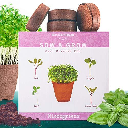Nature's Blossom  1 Nature's Blossom Microgreen Vegetables Sprouting Kit - Beginner Gardeners Seed Starter Set to Grow Basil