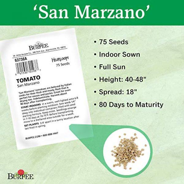 Burpee Heirloom Seed 3 Burpee San Marzano' Heirloom Paste Tomato, 75 seeds