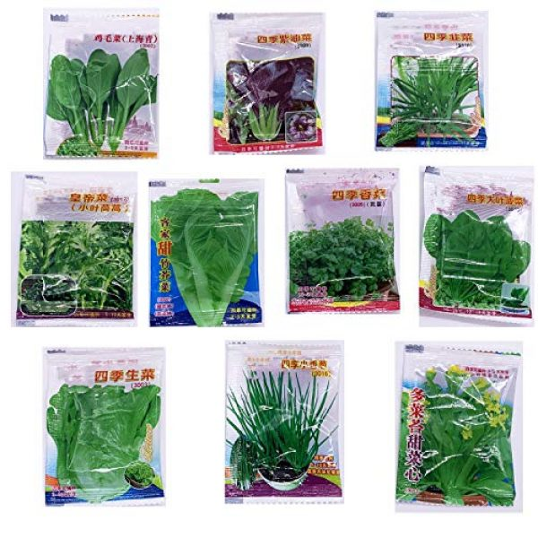 Kuting Organic Seed 5 Garden Vegetable Green Organic Chinese Seeds 10 Different Varieties Qty 5000+ for Planting Outside Door for Cooking Dish Soup Taste Good Delicious 100% Non-GMO by Kuting (10 Varieties-A)