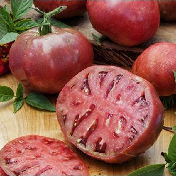 Hill Creek Seeds Heirloom Seed 1 Cherokee Purple Tomato Seeds - Heirloom Garden Variety - Non GMO