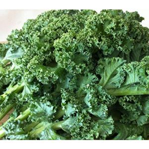 Isla's Garden Seeds Organic Seed 1 Dwarf Blue Curled Scotch Kale Seeds, 750+ Premium Heirloom Seeds, ON SALE, Top Seller Kale Seed, (Isla's Garden Seeds), Non Gmo Organic, 85% Germination, Survival Seeds, Highest Quality 100% Pure