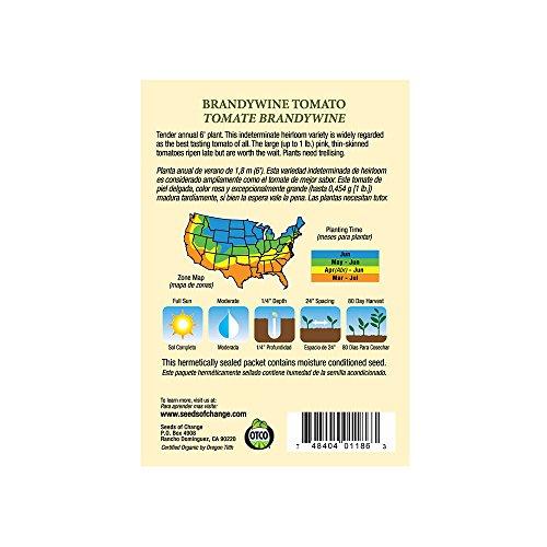 SEEDS OF CHANGE  3 Seeds of Change S10766 Certified Organic Brandywine Heirloom Tomato