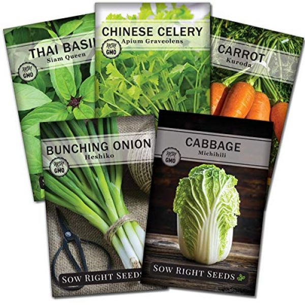 Sow Right Seeds Heirloom Seed 1 Sow Right Seeds - Asian Garden Seeds for Planting - Individaul Packets of Thai Basil, Chinese Celery, Japanese Bunching Onion, Michihili Cabbage, and Kuroda Carrot to Plant, Non-GMO Heirloom