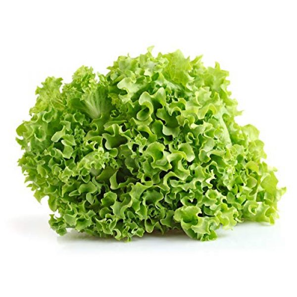 Isla's Garden Seeds Organic Seed 1 Salad Bowl Lettuce Seeds, 1000+ Premium Heirloom Seeds, Delicious & Crisp, On Sale, (Isla's Garden Seeds), Non Gmo Organic, 85% Germination Rates, Highest Quality Seed, 100% Pure