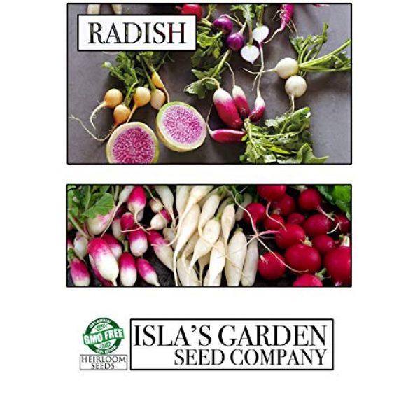 Isla's Garden Seeds Heirloom Seed 3 White Icicle Radish Seeds, 200+ Premium Heirloom Seeds, (Isla's Garden Seeds), Non GMO, Seeds.